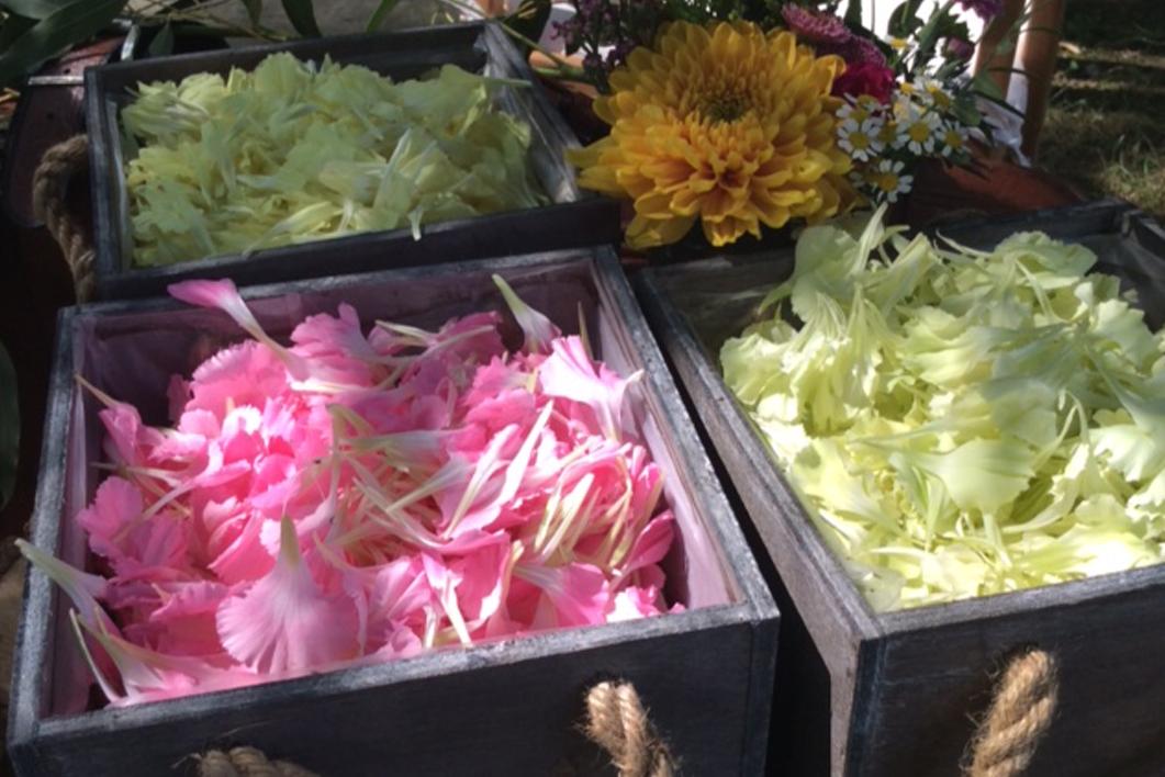 Bodas - Flor Fruits Eventos: